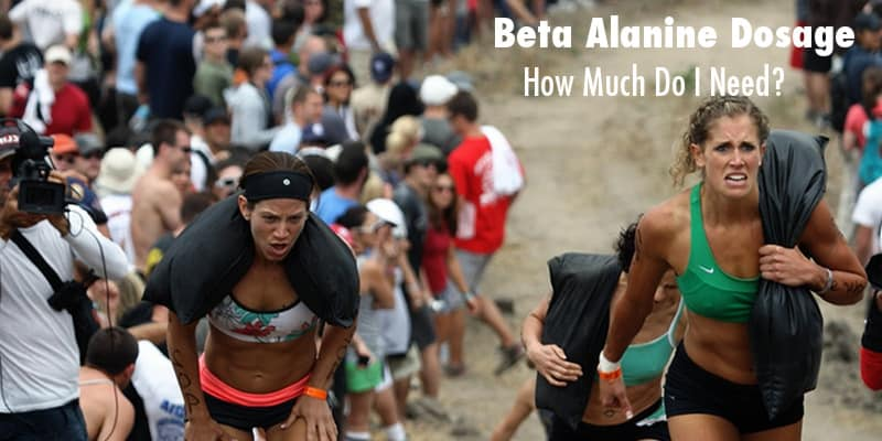 Beta Alanine Dosage- How Much Do I Need And How Should I Take It?