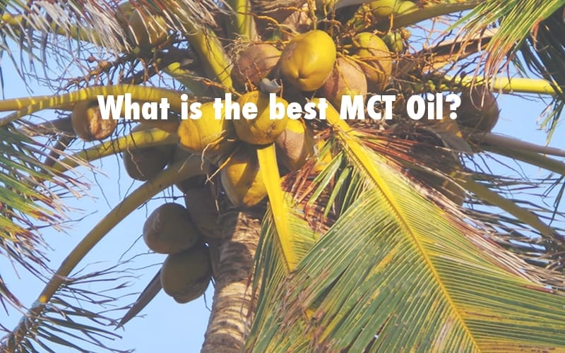 Criteria for finding the best MCT Oil
